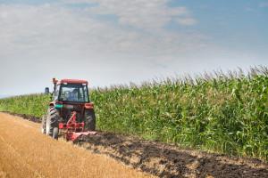 Divizia Agricola